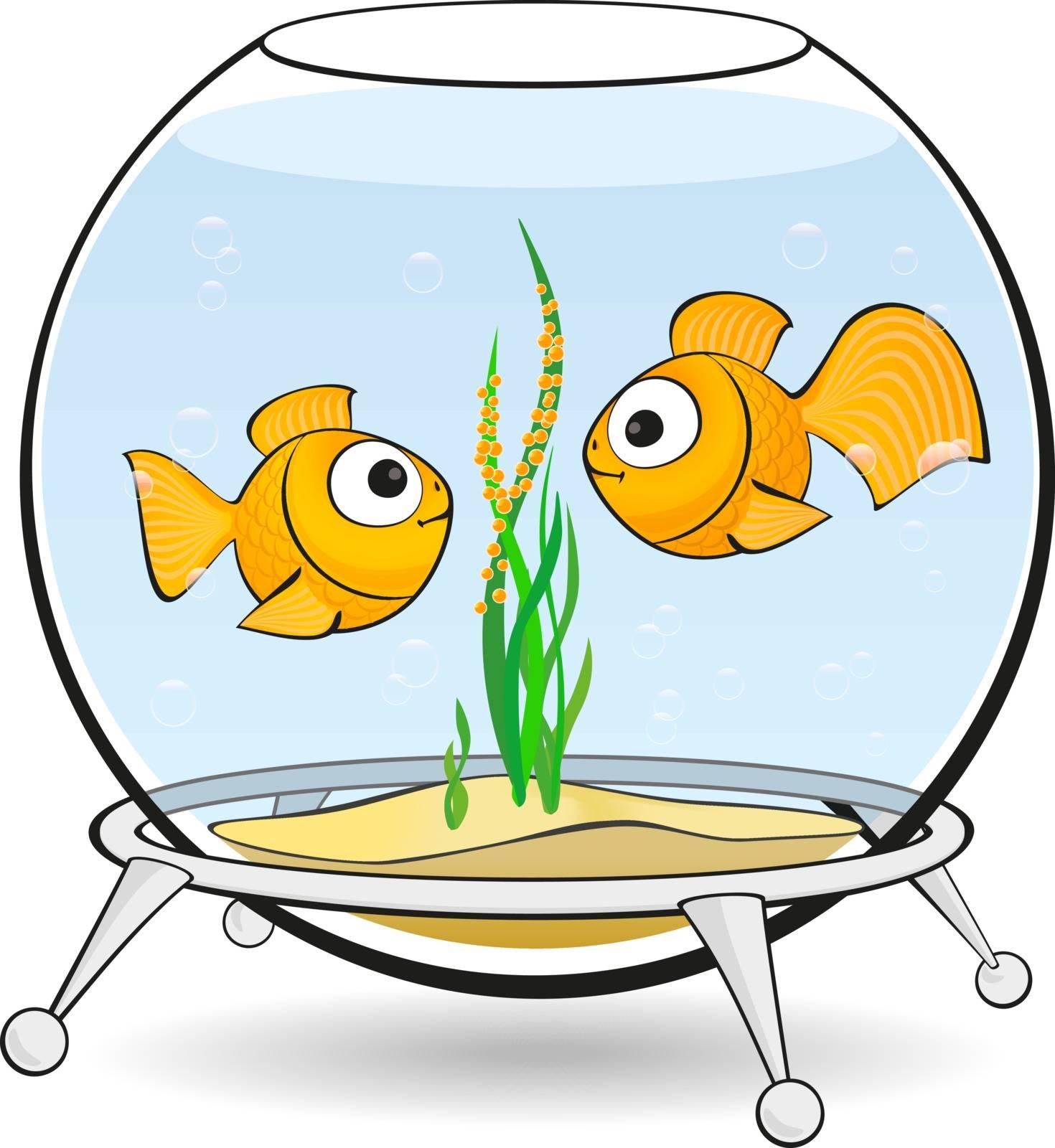 couple goldfish in an aquarium looking at caviar