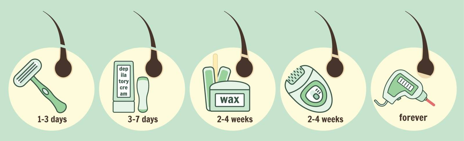 Hair removal methods and growth time infographic by tatahnka