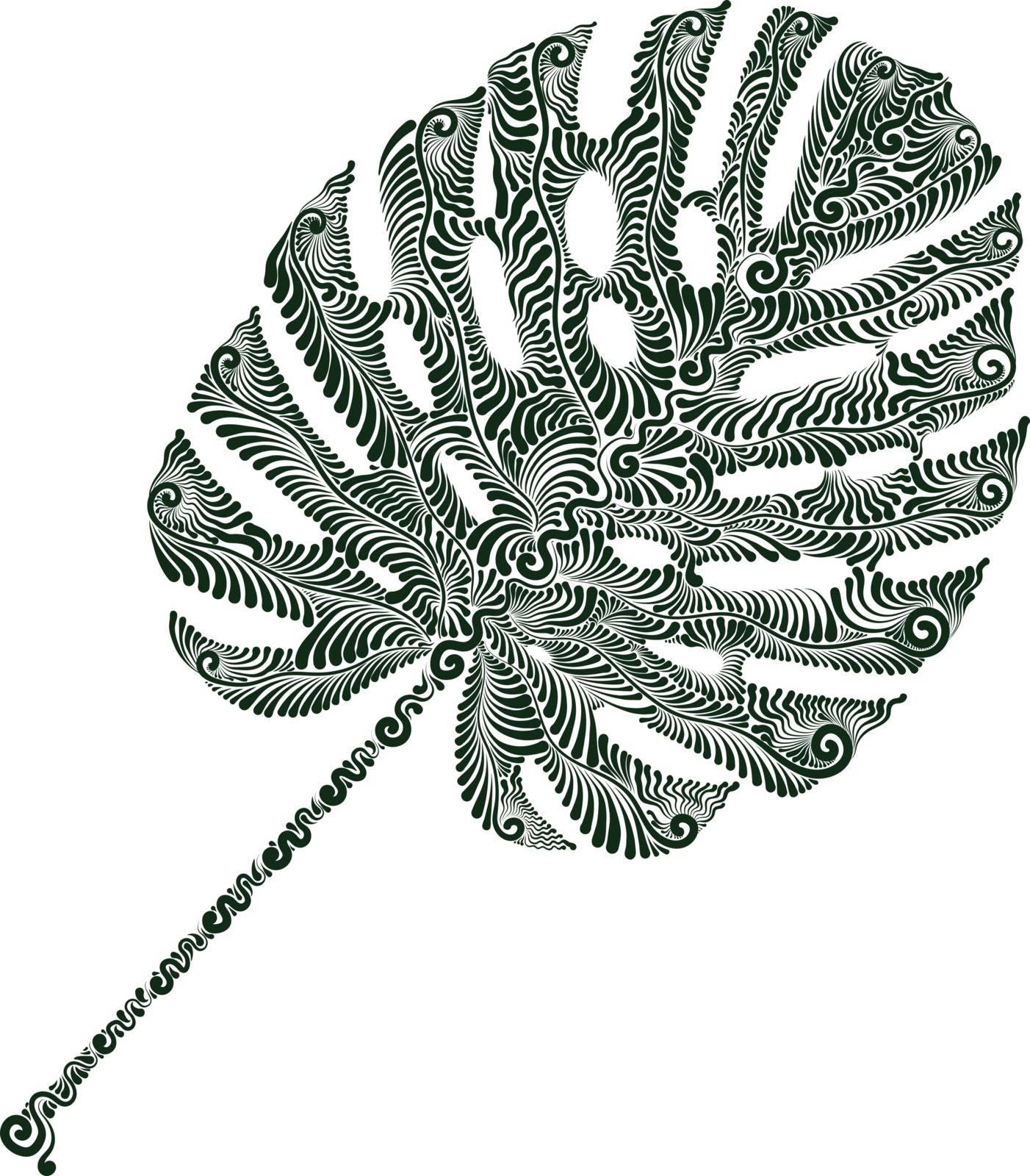 Plant leaf of Monstera decorative vector illustration