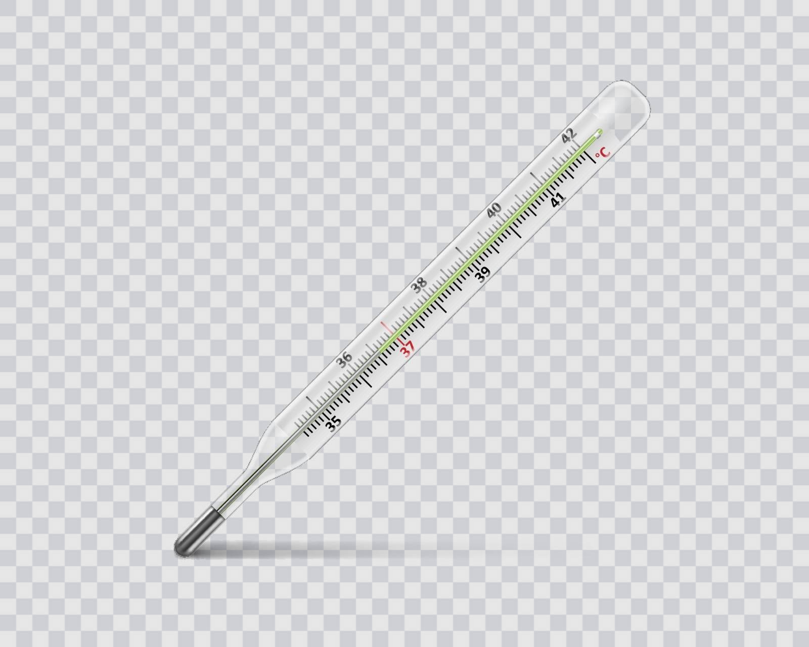 Medical mercury thermometer on transparent background. Realistic temperature diagnostic measurement instrument. vector illustration EPS 10