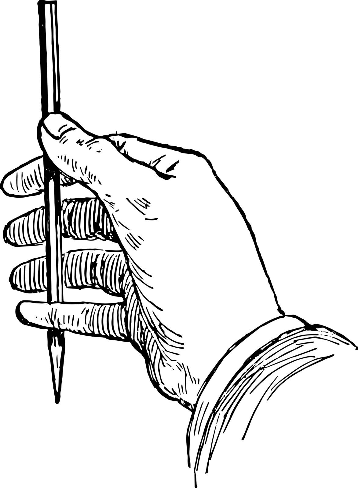 Estimating Lines using Pencil is the thumb the length of pencil which covers a line of the model rotating the arm it is estimating the proportion of this measurement to the second line vintage line drawing or engraving illustration.