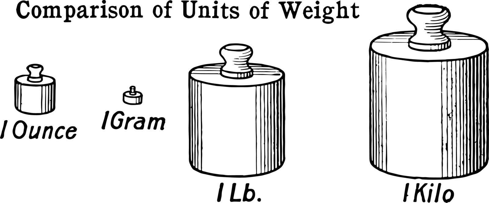 In the picture, the fundamental units of the measurement of ounces, kilogram, grams and pounds have been compared, vintage line drawing or engraving illustration.