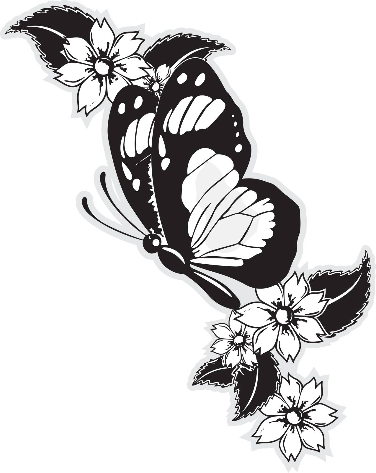 butterfly by samandale