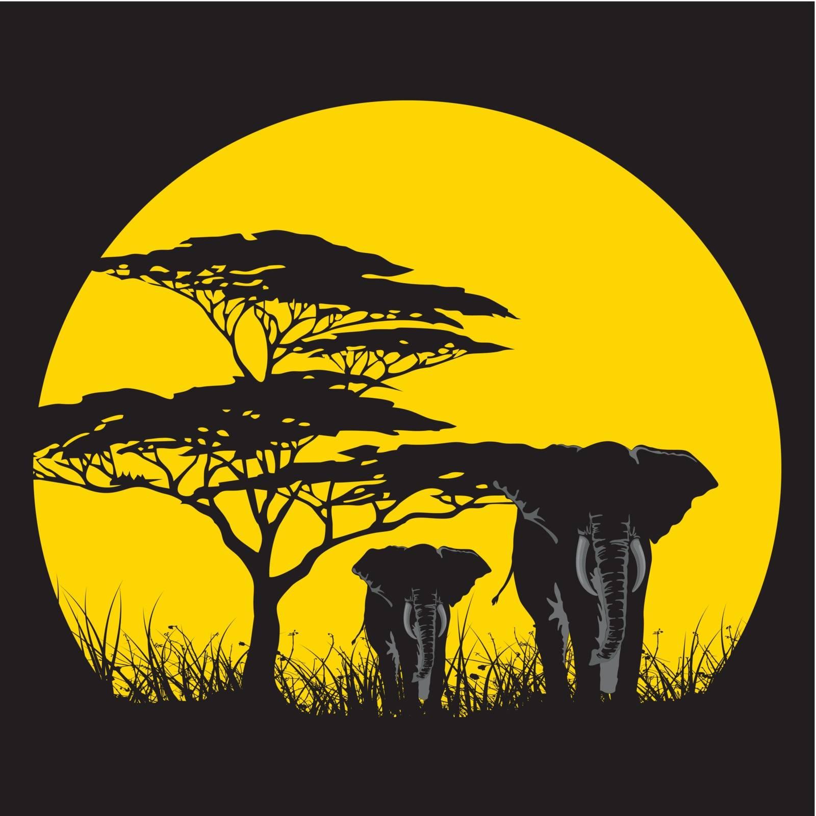SUN AFRICA by samandale