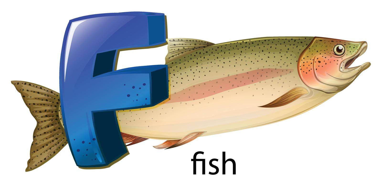 Illustration of a letter F for fish on a white background
