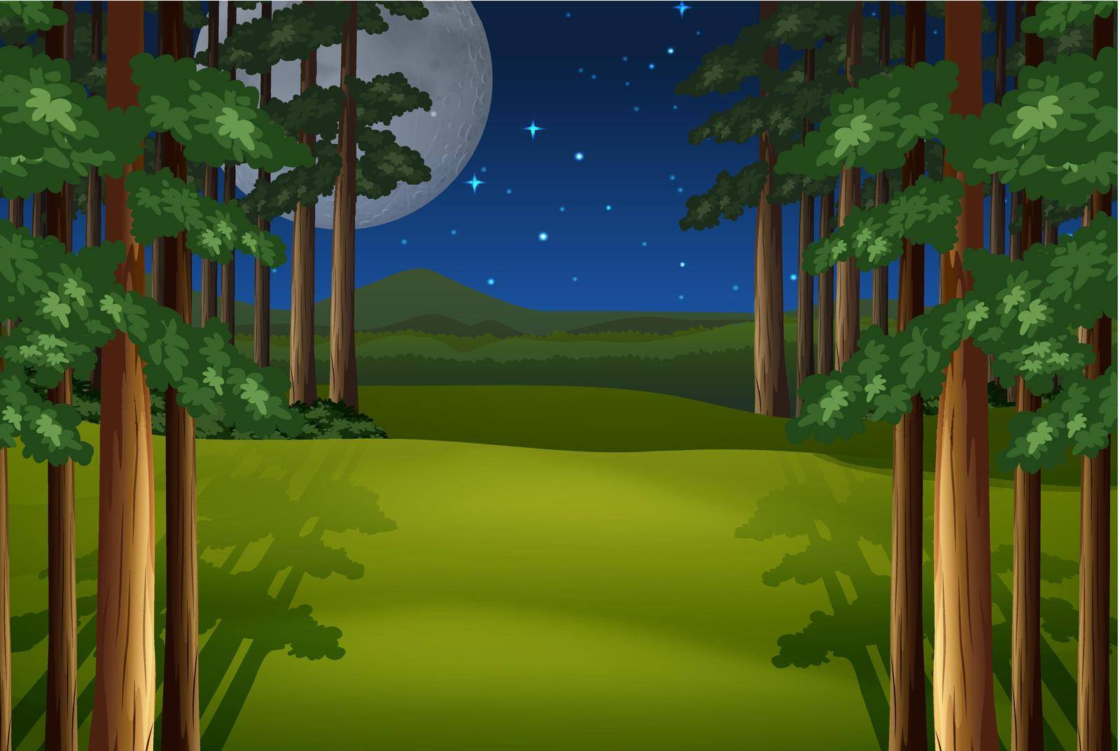 Scenery of a forest on a full moon night with stars