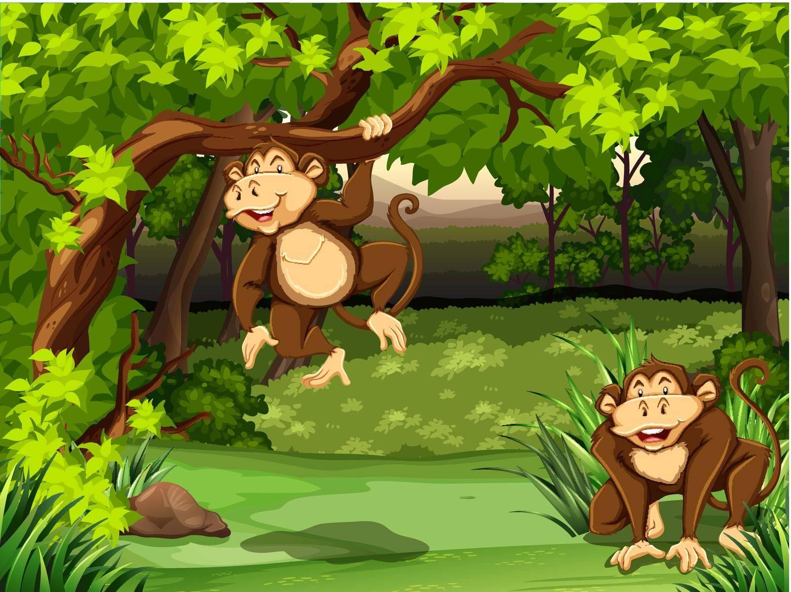 Two monkeys sitting in a jungle