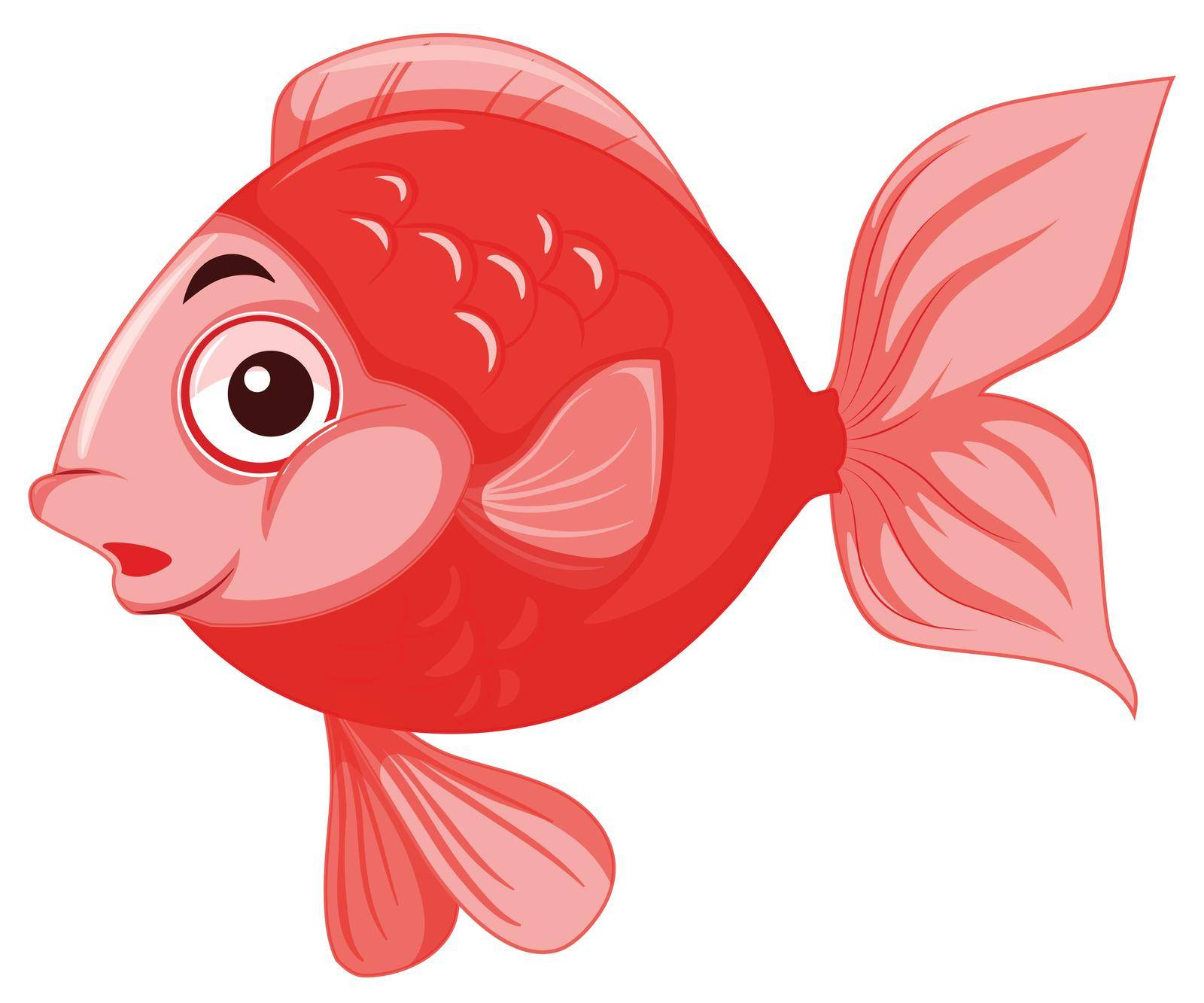 Red isolated gold fish illustration