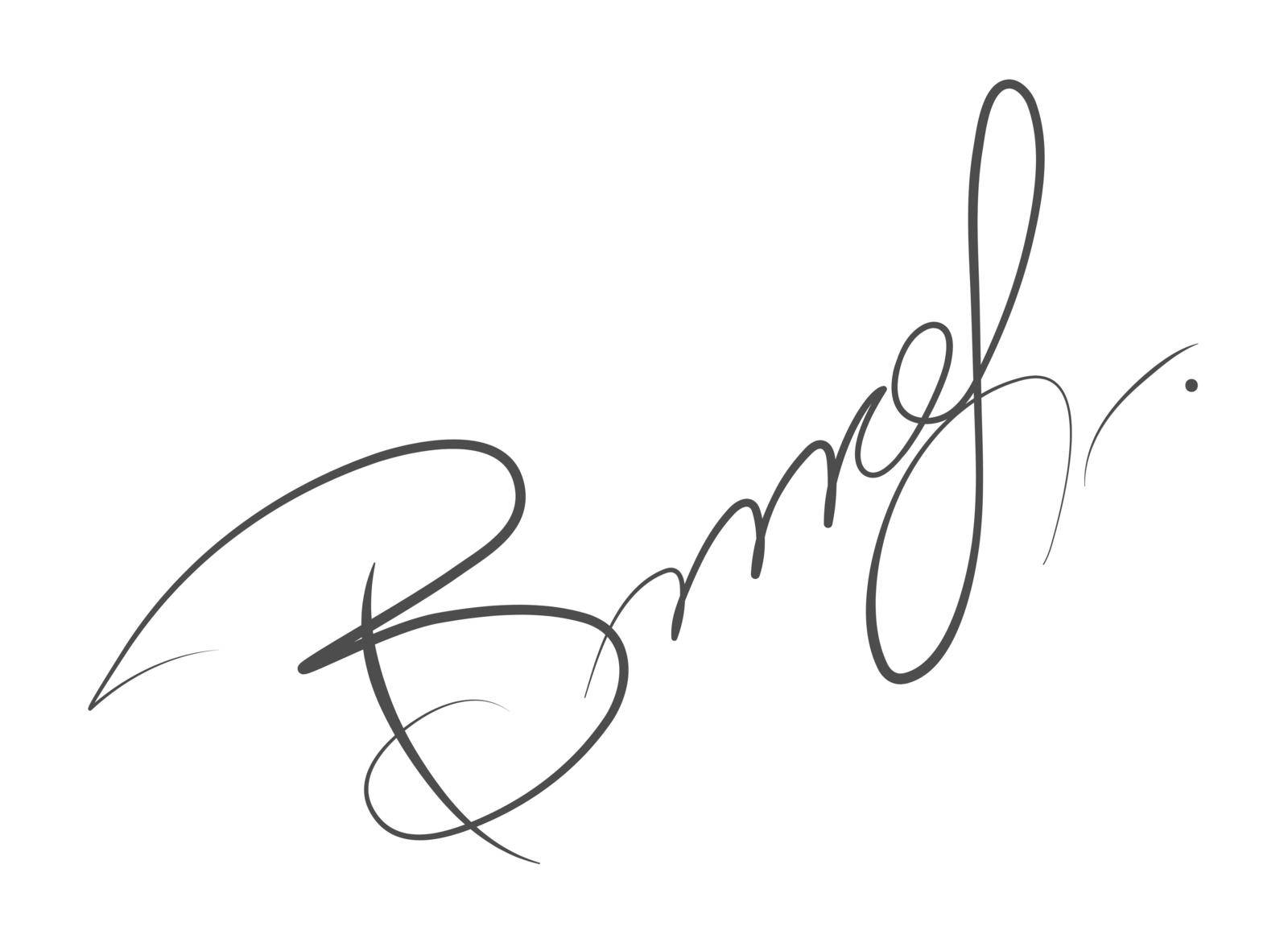 Abstract hand-drawn calligraphic autograph. Custom manual signature for documents by Grommik